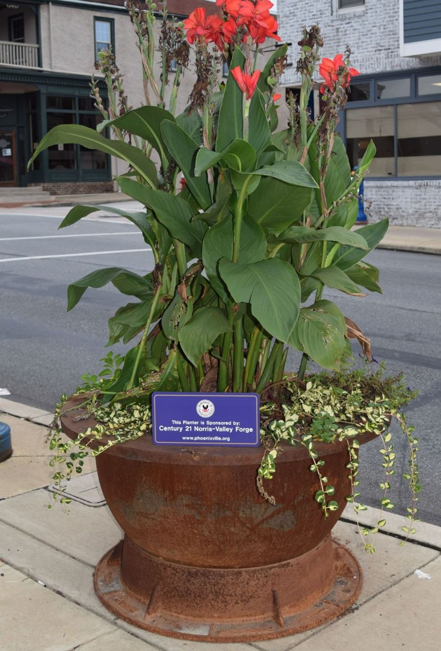 Century 21 Norris-Valley Forge Planter