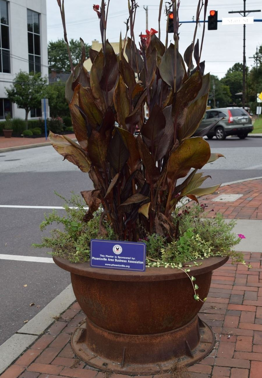 Phoenixville Area Business Association Planter