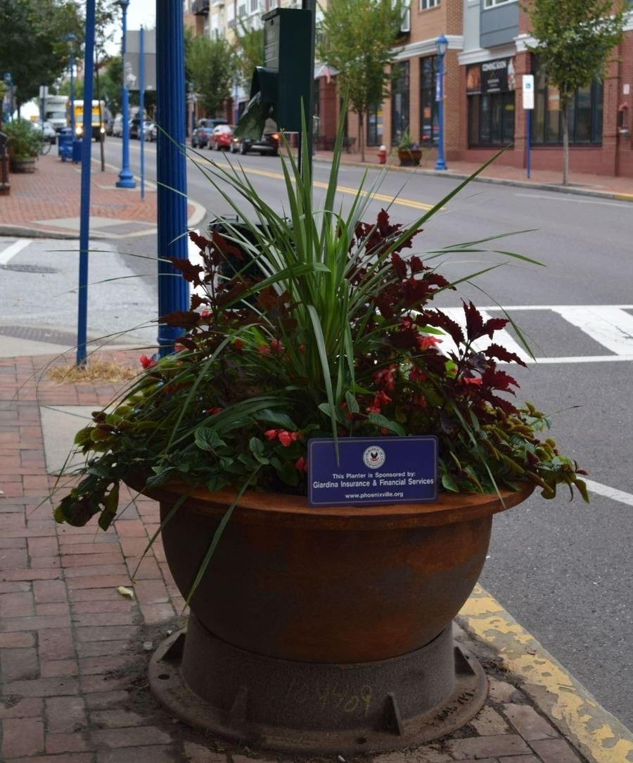 Giardina Insurance & Financial Services Planter