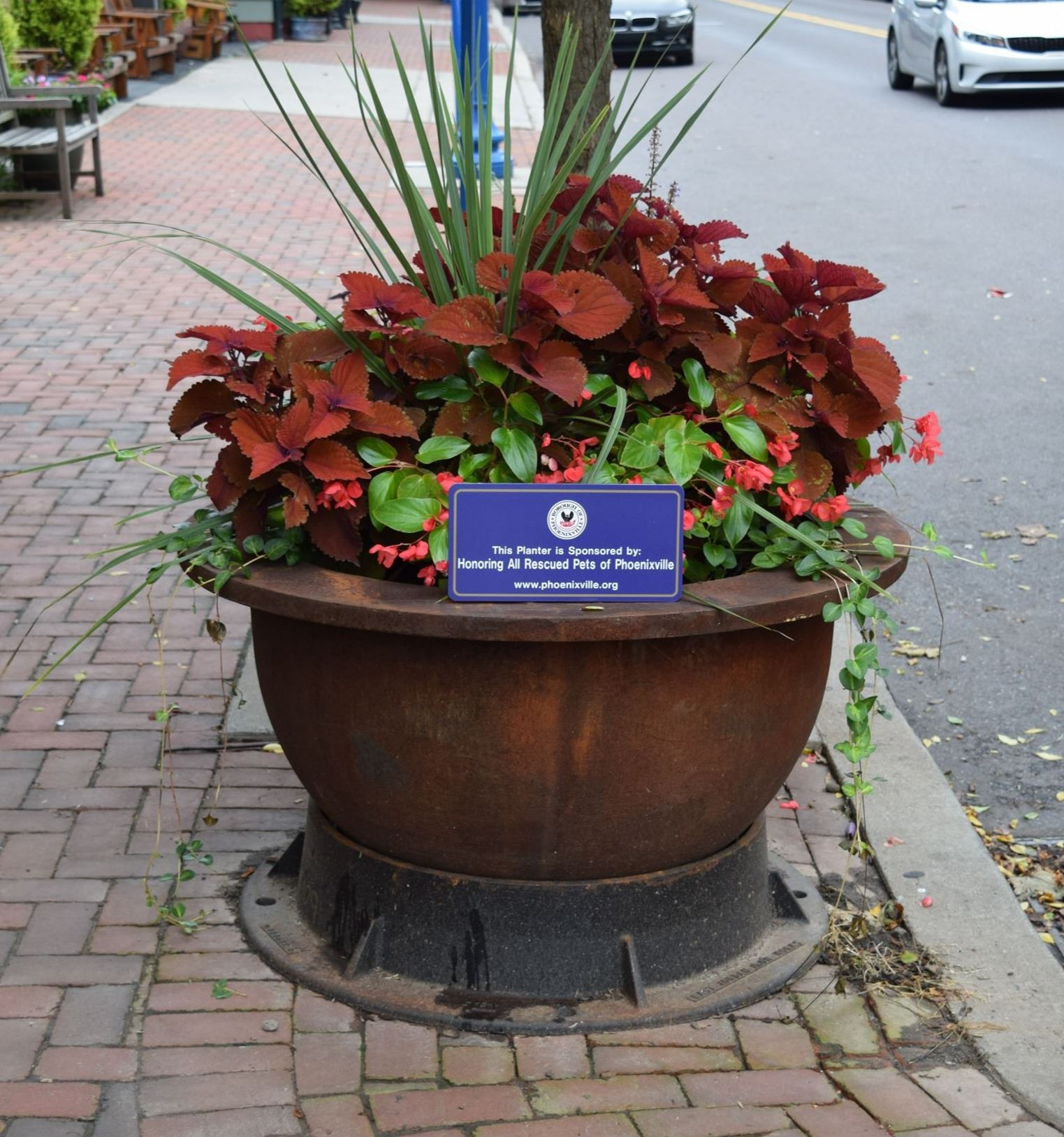 Honoring All Rescued Pets of Phoenixville Planter