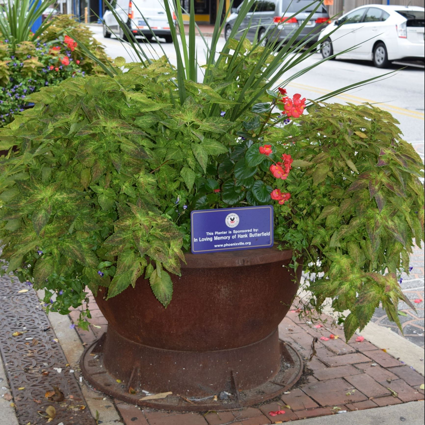 In Loving Memory of Hank Butterfield Planter