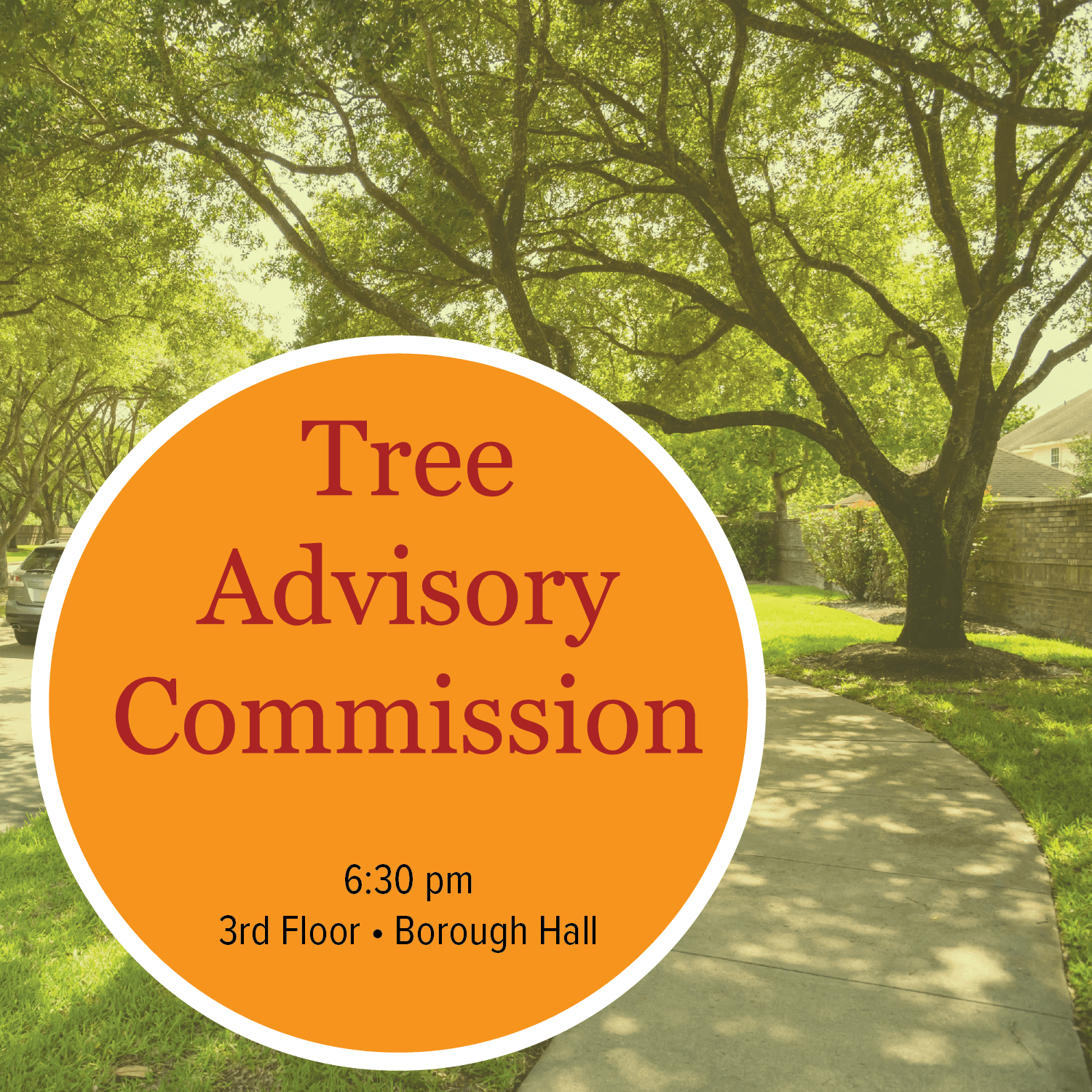 Tree Advisory Commission Meeting