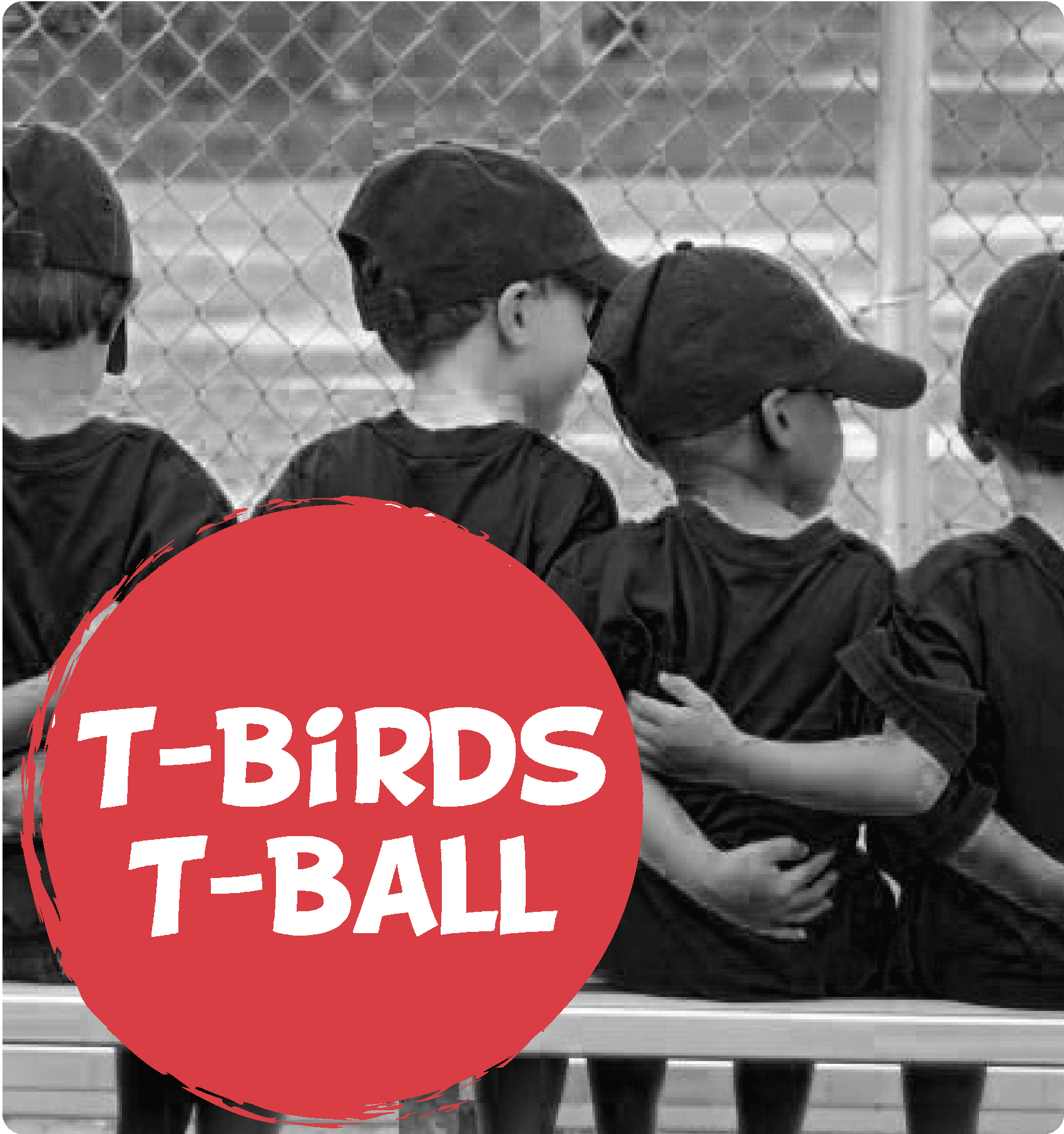 tbirds tball camp